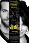 Silver Linings Playbook (2012) movie poster