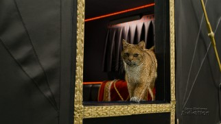 """Animating Azrael"" demonstrates how to drain the charm out of a cat's performance with CGI."