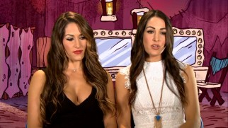 "Twins Brie and Nikka Bella discuss ""How to be a Stone Age Superstar."""