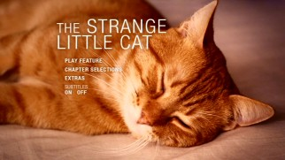 The cat who's not particularly strange or little sleeps on the DVD's scored main menu.