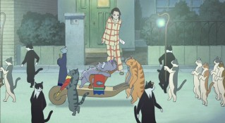 Is Haru dreaming? Or is there really a parade of cats outside her house?