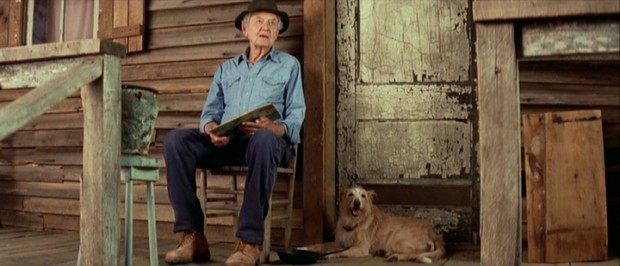 Abner Meecham (Hal Holbrook) stands his ground (or sits, as the case may be) at the tenant shack he moves into with newly obtained dog Nipper (Dually).