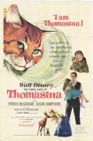The Three Lives of Thomasina movie poster - click for larger view, other designs and to buy