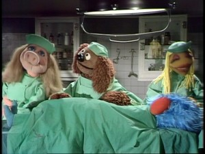 "Rowlf plays absent-minded Doctor Bob and Miss Piggy and Janice are his assistants in ""Veterinarian's Hospital"" sketches."