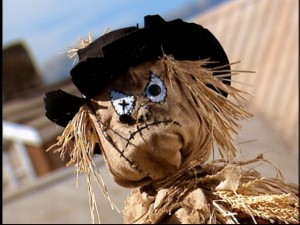 "The Baxter's scarecrow is said to come alive on certain nights and steal people's souls. After this episode, I wouldn't be surprised to see Raven headlining ""I Still Haven't Forgotten What You Did Nine Summers Ago"" in 2006."