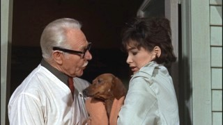 Fran (Suzanne Pleshette) delivers the expecting mother to Dr. Pruitt (Charles Ruggles), the family's vet.