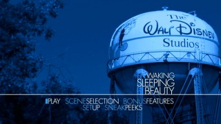 The Disney studio's Blue Period is occurring on the Waking Sleeping Beauty DVD menus.