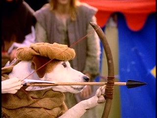 "As the famed English outlaw Robin Hood, Wishbone demonstrates his archery expertise in ""Paw Prints of Thieves."""