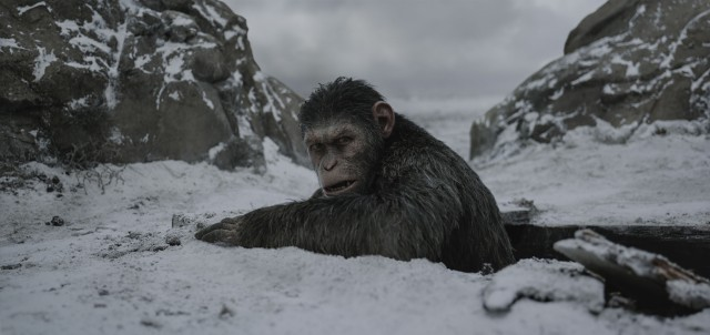 Once again, computer animation and Andy Serkis motion capture brings the ape Caesar to life like no digital character before him.