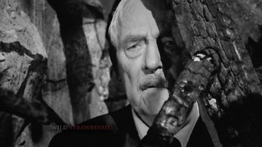 Isak (Victor Sjöström) peeks out behind a tree on Criterion's simple but sufficient Wild Strawberries Blu-ray menu.