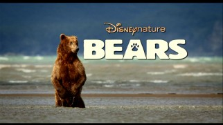 "Don't worry kids, Disneynature will return to theaters next spring with the April 2014 release of ""Bears."""