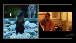 Adam Sandler's goofy voice for Donald the Monkey is just one of many effects applied.